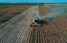 Çiftçilere Devlet Destekli Hibe Kredi Nasıl Alınır?