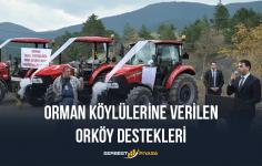 Orman Köylülerine Verilen Destekler (Orköy Destekleri) 2020