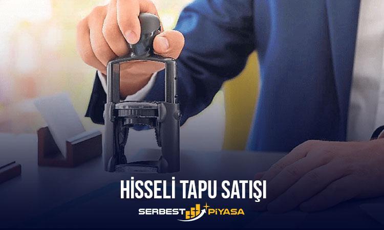 hisse 1