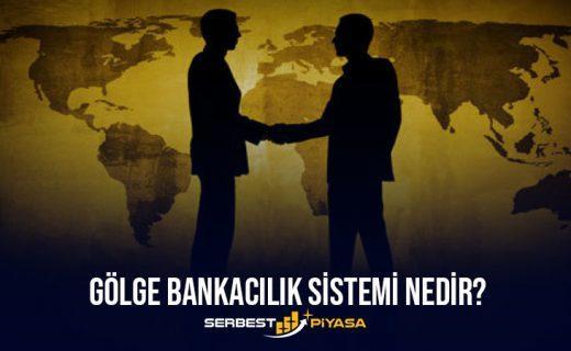 Gölge Bankacılık Sistemi Nedir? Türkiyede Gölge Bankacılık (2021