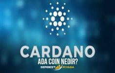 Cardano Coin Nedir? (2021)